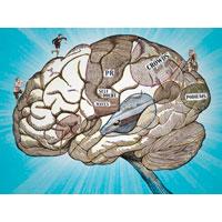 Практическая психология для триатлетов